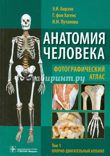 Human anatomy dvd