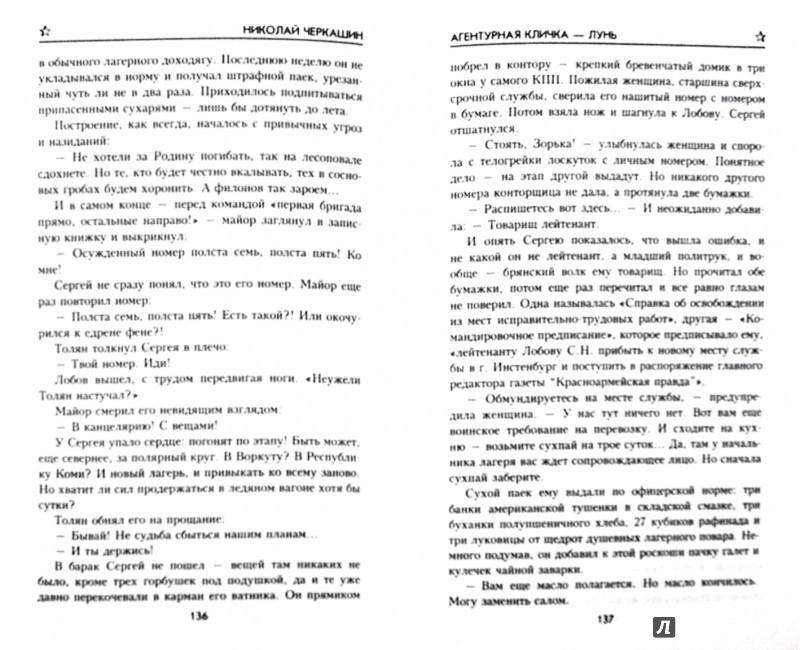 Иллюстрация 1 из 15 для Агентурная кличка - Лунь - Николай Черкашин | Лабиринт - книги. Источник: Лабиринт