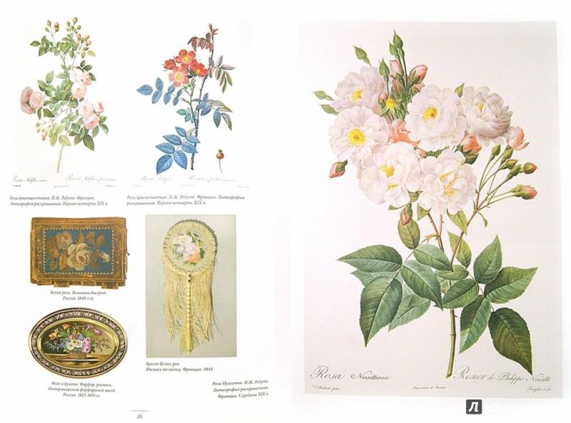 Иллюстрация 1 из 34 для Мода на ботанику. Цветочный мир Петергофа - Волкова, Трубановская | Лабиринт - книги. Источник: Лабиринт
