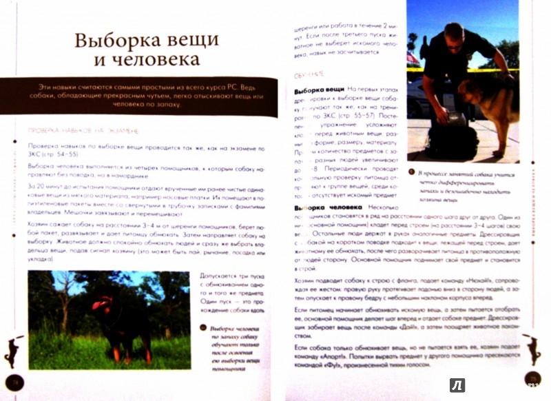 Иллюстрация 1 из 13 для Все о дрессировке собак - Арсений Нестеров | Лабиринт - книги. Источник: Лабиринт
