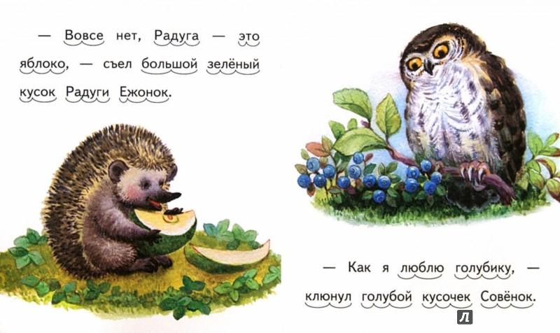 Иллюстрация 1 из 12 для Вкусная радуга - Елена Ермолова   Лабиринт - книги. Источник: Лабиринт