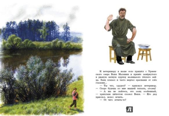 Иллюстрация 1 из 42 для Заячьи лапы - Константин Паустовский | Лабиринт - книги. Источник: Лабиринт