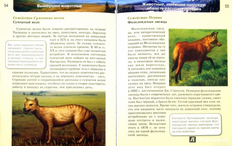 Иллюстрация 1 из 26 для Вымершие животные | Лабиринт - книги. Источник: Лабиринт