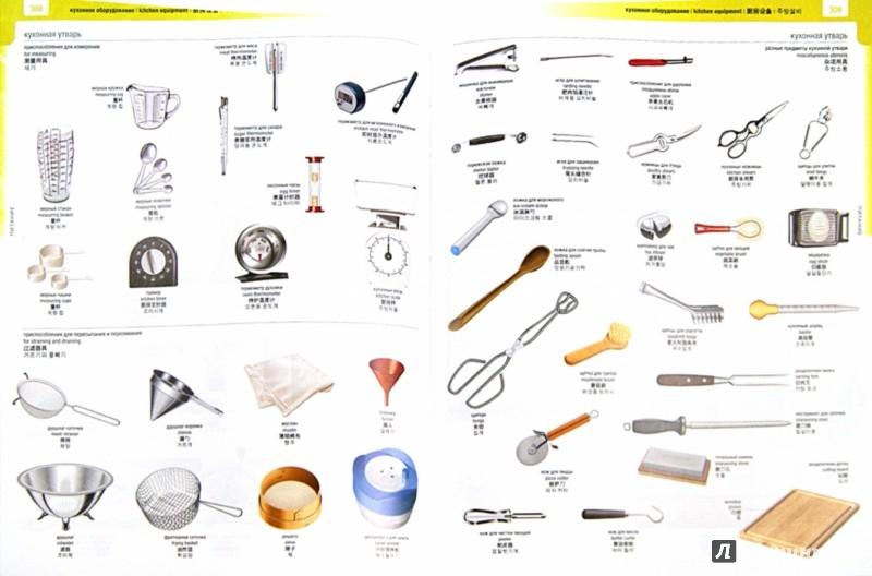 Иллюстрация 1 из 14 для Большой визуальный словарь на английском, китайском, корейском и русском языках | Лабиринт - книги. Источник: Лабиринт