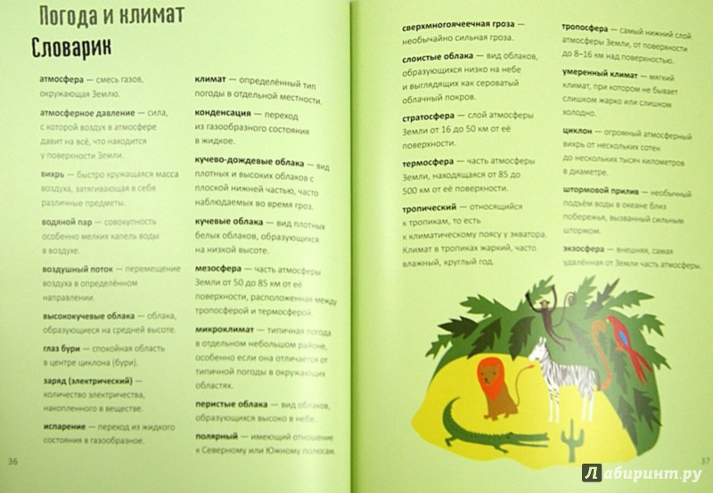 Иллюстрация 1 из 21 для Земля за 30 секунд - Анита Ганери | Лабиринт - книги. Источник: Лабиринт