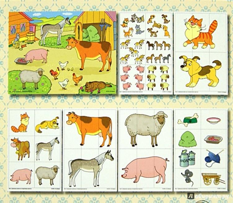 Иллюстрация 1 из 32 для Домашние животные. Интерактивные карточки по познавательно-речевому развитию - Елена Косинова | Лабиринт - книги. Источник: Лабиринт