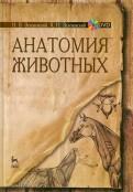 Зеленевский, Зеленевский: Анатомия животных. Учебное пособие (+DVD)