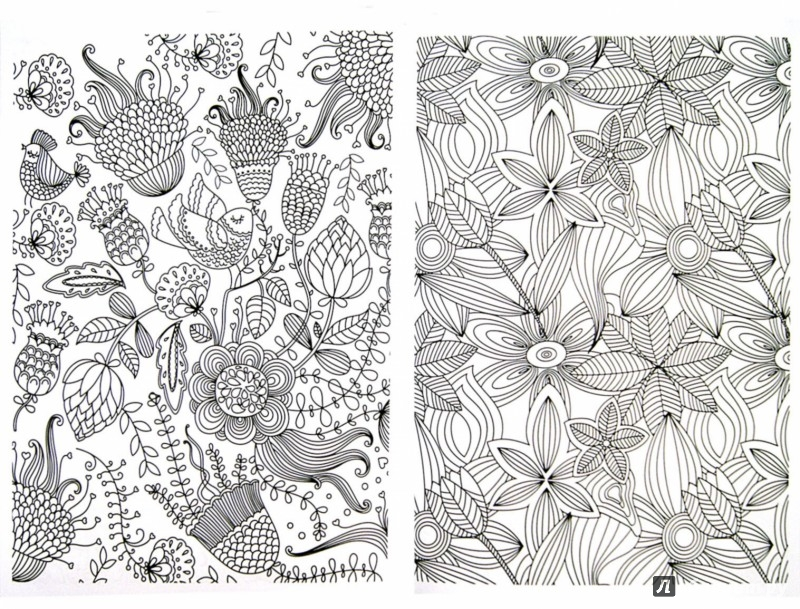 Иллюстрация 1 из 24 для Узоры и цветы   Лабиринт - книги. Источник: Лабиринт
