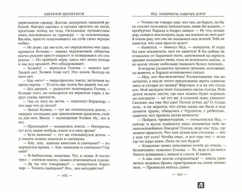 Иллюстрация 1 из 6 для Нед. Лабиринты забытых дорог - Евгений Щепетнов   Лабиринт - книги. Источник: Лабиринт