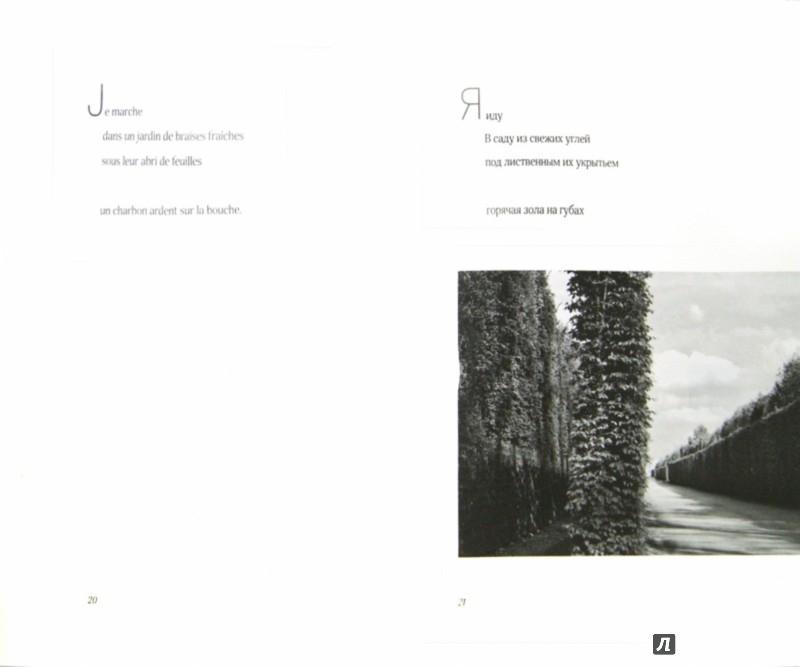 Иллюстрация 1 из 8 для В комнатах садов. Dans les chambres des vergers - Филипп Жакоте | Лабиринт - книги. Источник: Лабиринт