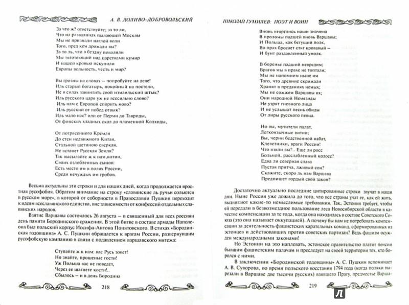 Иллюстрация 1 из 16 для Семья Гумилевых. Книга1. Николай Гумилев. Поэт и воин - Анатолий Доливо-Добровольский   Лабиринт - книги. Источник: Лабиринт