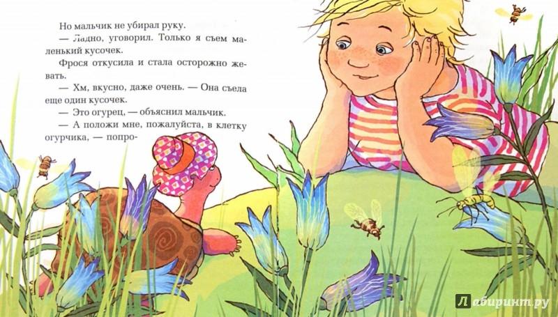 Иллюстрация 1 из 11 для Про улитку и черепаху - Маша Трауб | Лабиринт - книги. Источник: Лабиринт