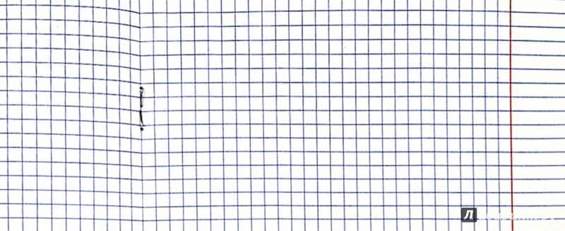 Иллюстрация 1 из 4 для Тетрадь 12 листов, клетка, пластиковая обложка, розовая (120103) | Лабиринт - канцтовы. Источник: Лабиринт