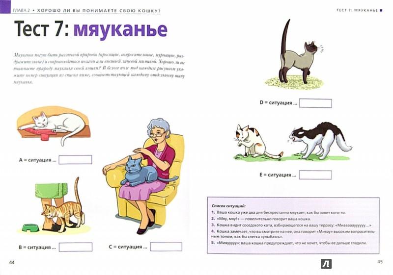 Иллюстрация 1 из 13 для Расшифруйте язык вашей кошки. Позы, мяуканье, метки... - Валери Драмар | Лабиринт - книги. Источник: Лабиринт