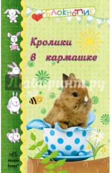Кролики в кармашке