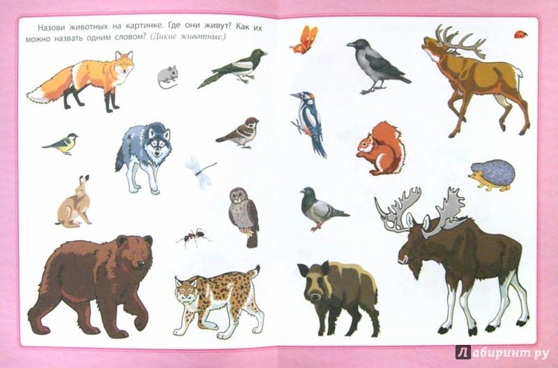 Иллюстрация 1 из 9 для Любознательным малышам. Развитие речи - Евгения Ищук   Лабиринт - книги. Источник: Лабиринт