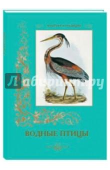 Водные птицыЗоология<br>Водные птицы распространены по всему миру, они встречаются на озерах и болотах средней полосы, в тропиках и субтропиках, в полярных областях, на морях и океанах.<br>Составитель: Астахов А.Ю.<br>