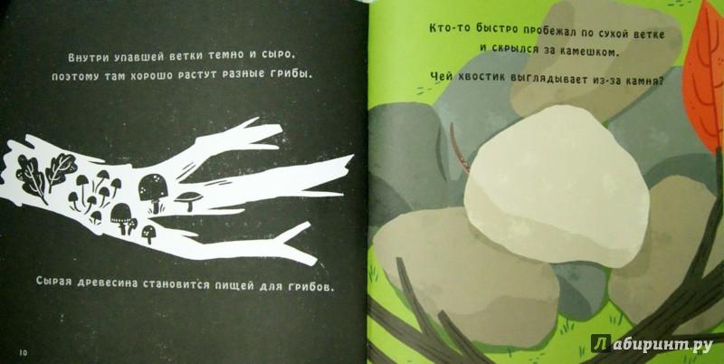 Иллюстрация 1 из 30 для Что скрывает яблоня? - Браун, Нэсснер | Лабиринт - книги. Источник: Лабиринт