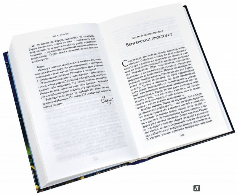 Иллюстрация 1 из 15 для Гарри Поттер и Кубок Огня - Джоан Роулинг | Лабиринт - книги. Источник: Лабиринт