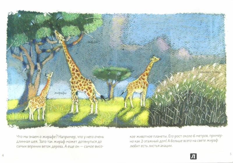 Иллюстрация 1 из 10 для Африканская саванна - Анна Веркина   Лабиринт - книги. Источник: Лабиринт