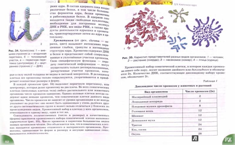 Иллюстрация 1 из 5 для Биология. 10 класс. Учебник. Базовый уровень. ФГОС - Романова, Данилов, Владимирская | Лабиринт - книги. Источник: Лабиринт