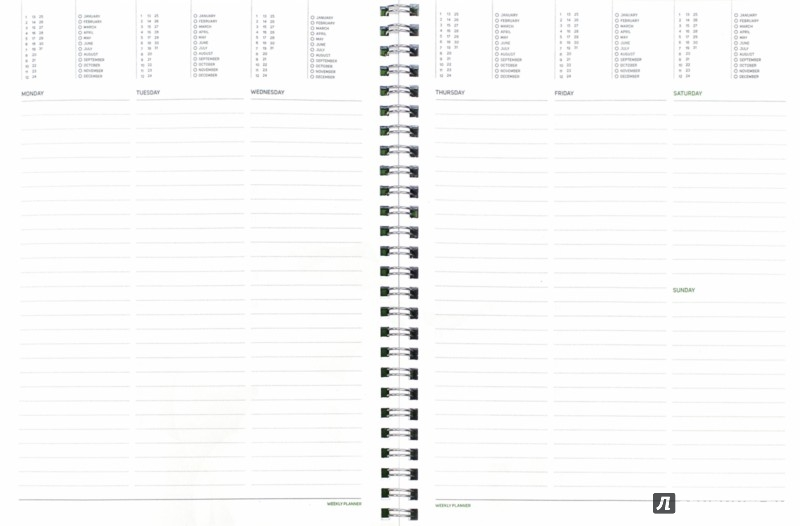 """Иллюстрация 1 из 6 для Еженедельник недатированный """"Tintoretto"""" (В5, бордовый) (3-513/04)   Лабиринт - канцтовы. Источник: Лабиринт"""