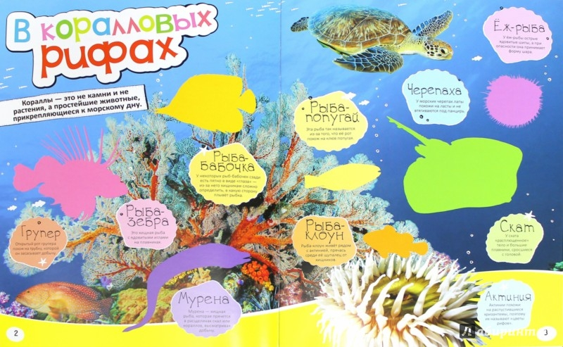 Иллюстрация 1 из 9 для Водный мир | Лабиринт - книги. Источник: Лабиринт