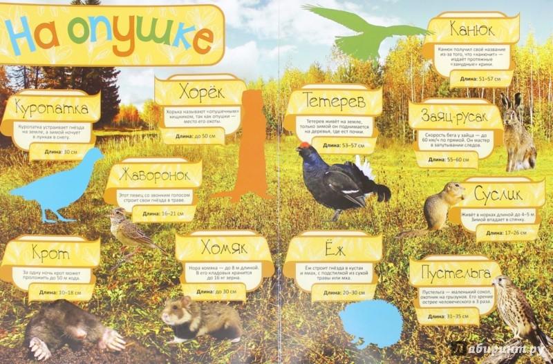 Иллюстрация 1 из 10 для Лесные жители | Лабиринт - книги. Источник: Лабиринт