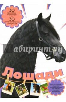 Торманова Анна Сергеевна Лошади