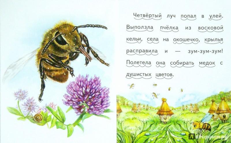 Иллюстрация 1 из 28 для Утренние лучи - Константин Ушинский | Лабиринт - книги. Источник: Лабиринт