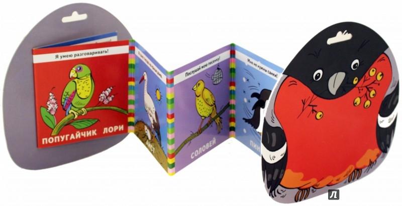 Иллюстрация 1 из 13 для Птичка | Лабиринт - книги. Источник: Лабиринт