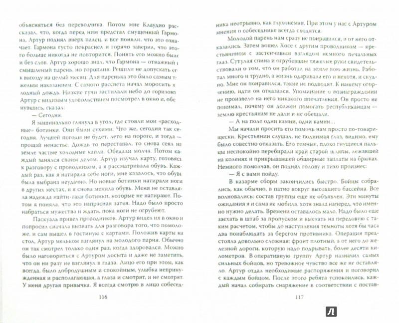 Иллюстрация 1 из 17 для Динамит для сеньориты - Елизавета Паршина   Лабиринт - книги. Источник: Лабиринт