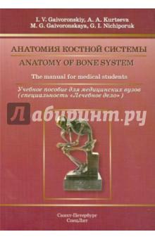 Анатомия костной системы. Учебное пособие на английском языке