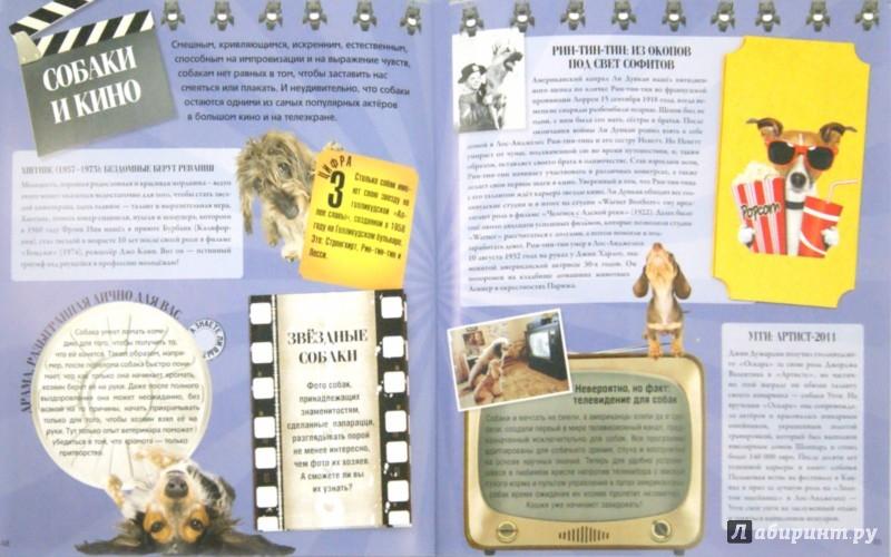 Иллюстрация 1 из 20 для Собаки. Подарок для всех, кто обожает собак - Жан Кювелье | Лабиринт - книги. Источник: Лабиринт