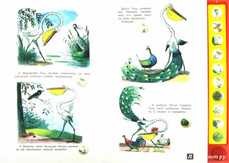 Иллюстрация 1 из 5 для Сказка-мультфильм. Это что за птица? - Владимир Сутеев | Лабиринт - книги. Источник: Лабиринт