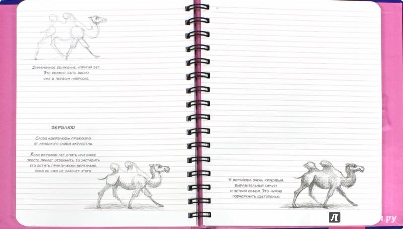 Иллюстрация 1 из 29 для Животные. Sketchbook (синий) - Н. Савельева   Лабиринт - канцтовы. Источник: Лабиринт