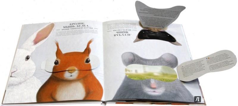 Иллюстрация 1 из 24 для Зооптика. Мир глазами животных - Гийом Дюпра | Лабиринт - книги. Источник: Лабиринт