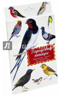 """Дидактические карточки """"Городские птицы"""""""