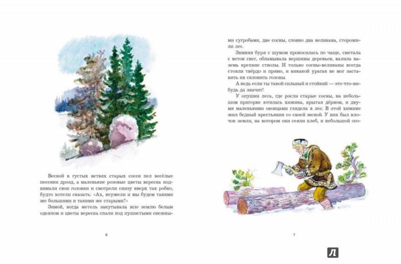 Иллюстрация 1 из 37 для Зимняя сказка - Сакариас Топелиус   Лабиринт - книги. Источник: Лабиринт