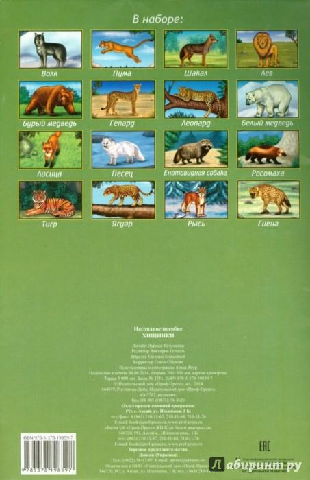 Иллюстрация 1 из 4 для Наглядное пособие А4. Хищники | Лабиринт - книги. Источник: Лабиринт
