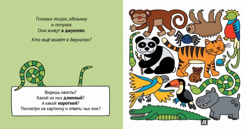 Иллюстрация 1 из 14 для Учим животных и противоположности   Лабиринт - книги. Источник: Лабиринт