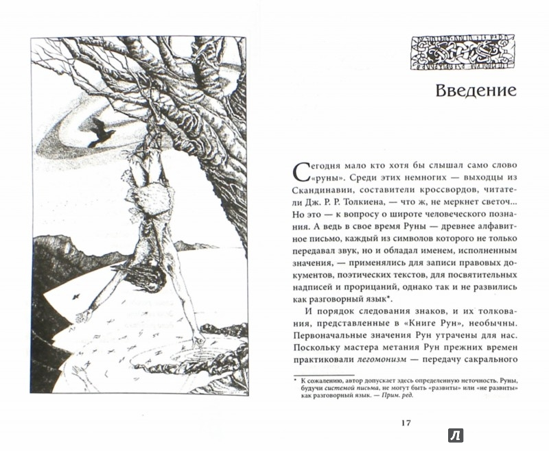 Иллюстрация 1 из 11 для Книга Рун. Руководство пользования древним Оракулом. Руны викингов - Ральф Блюм | Лабиринт - книги. Источник: Лабиринт