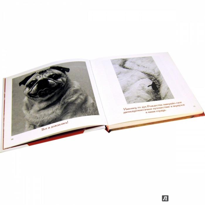 Иллюстрация 1 из 31 для Комплект из 6 подарочных книг Б.Т.Грива в переплете - Бредли Грив | Лабиринт - книги. Источник: Лабиринт