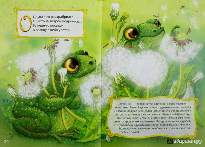 Иллюстрация 1 из 31 для Цветочная Азбука - Любовь Яковенко   Лабиринт - книги. Источник: Лабиринт