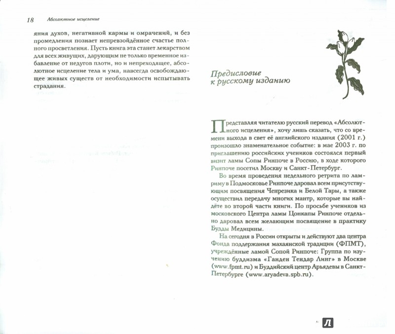 Иллюстрация 1 из 8 для Абсолютное исцеление - Ринпоче Сопа | Лабиринт - книги. Источник: Лабиринт