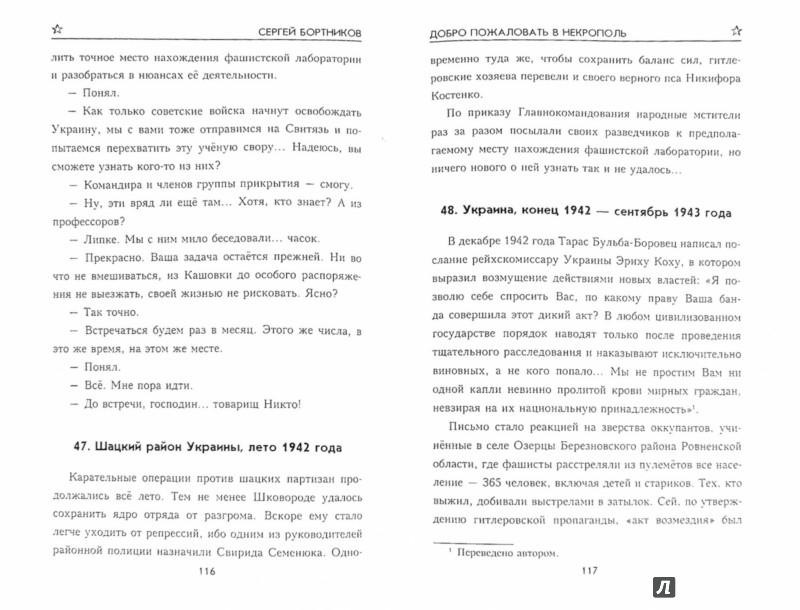 Иллюстрация 1 из 31 для Добро пожаловать в Некрополь - Сергей Бортников | Лабиринт - книги. Источник: Лабиринт