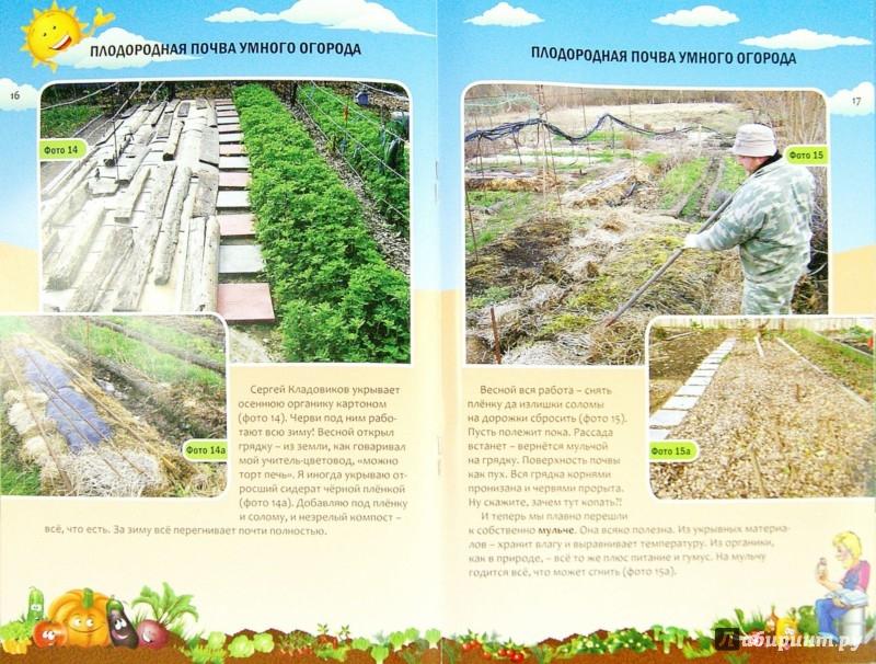Иллюстрация 1 из 17 для Плодородная почва умного огорода - Николай Курдюмов | Лабиринт - книги. Источник: Лабиринт