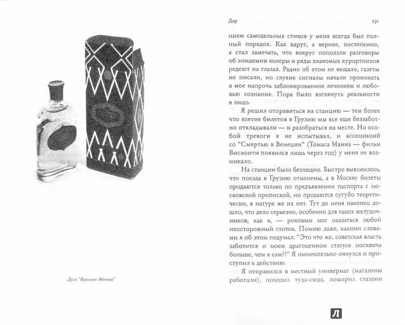 Иллюстрация 1 из 14 для Напрасные совершенства и другие виньетки - Александр Жолковский | Лабиринт - книги. Источник: Лабиринт