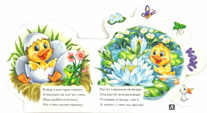 Иллюстрация 1 из 13 для Всё про утёнка - Ринат Курмашев | Лабиринт - книги. Источник: Лабиринт