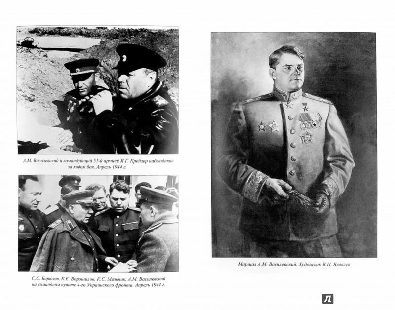Иллюстрация 1 из 10 для Маршал Василевский - Владимир Дайнес   Лабиринт - книги. Источник: Лабиринт